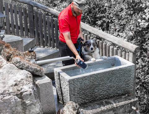 Keeping Your Dog Hydrated on Outdoor Adventures
