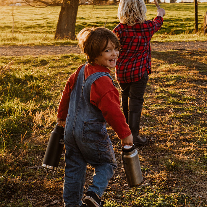 Kids picking apples in orchard