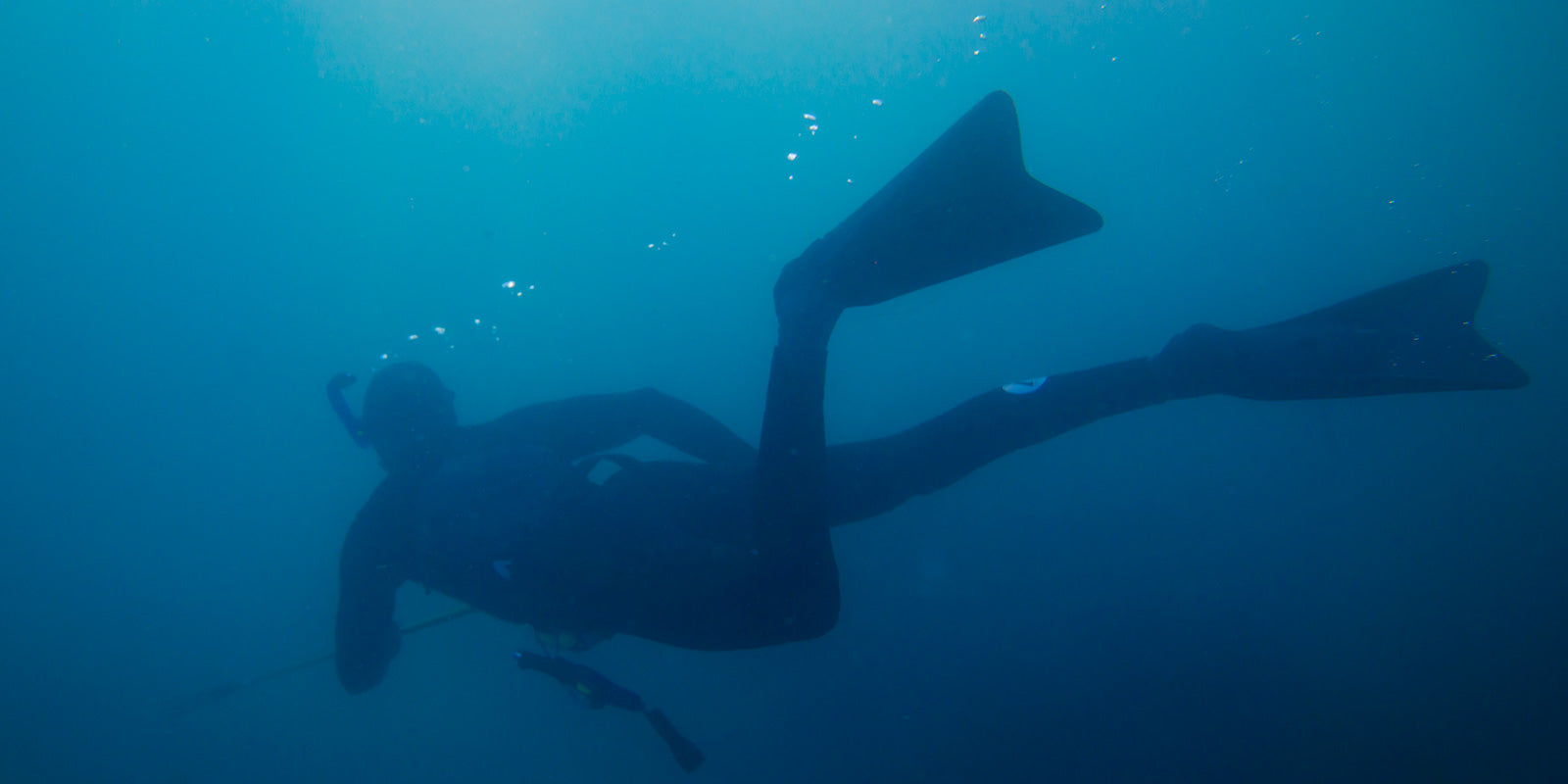 Spearfishing diver