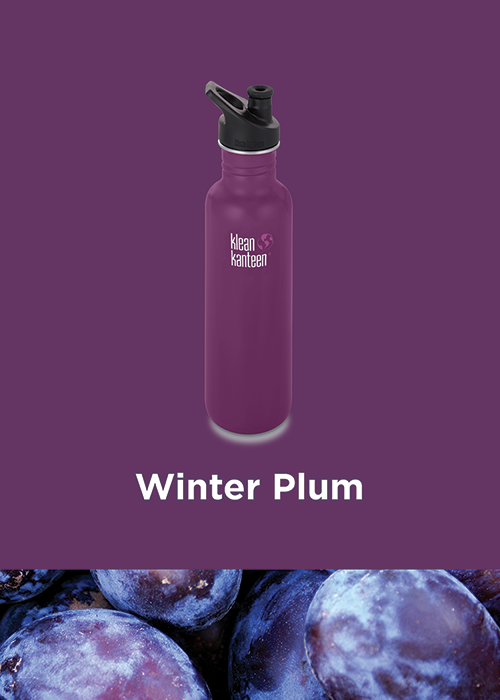 Winter Plum