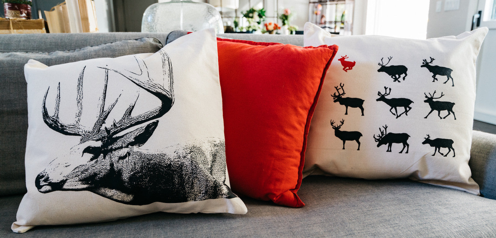 Pillow & Ornaments