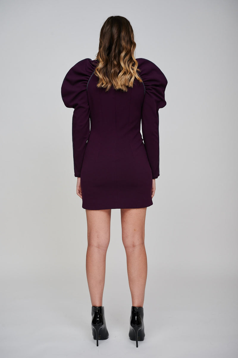 The EOS Purple Dress With Grey Velvet Piping Back View