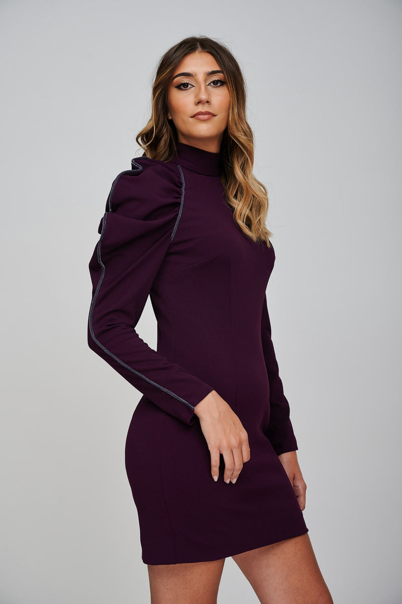 The EOS Purple Dress With Grey Velvet Piping Side