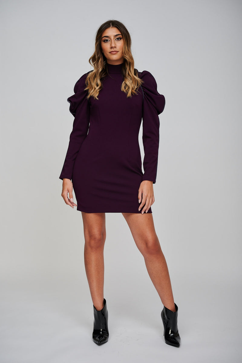 The EOS Purple Dress With Grey Velvet Piping Full Length