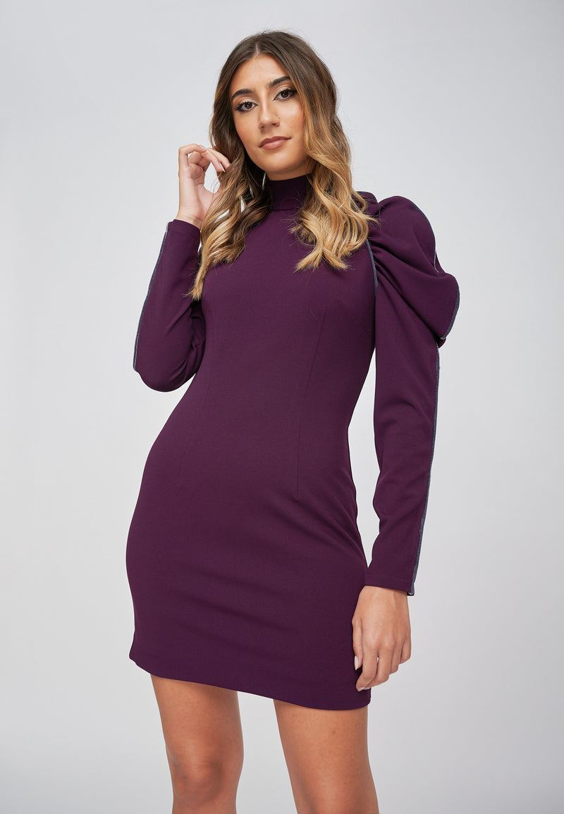 The EOS Purple Dress With Grey Velvet Piping