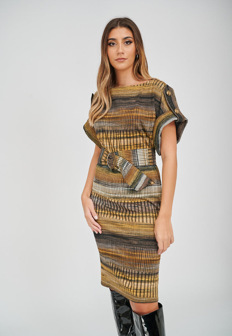 The Zoe Stripe Print Jacquard Dress