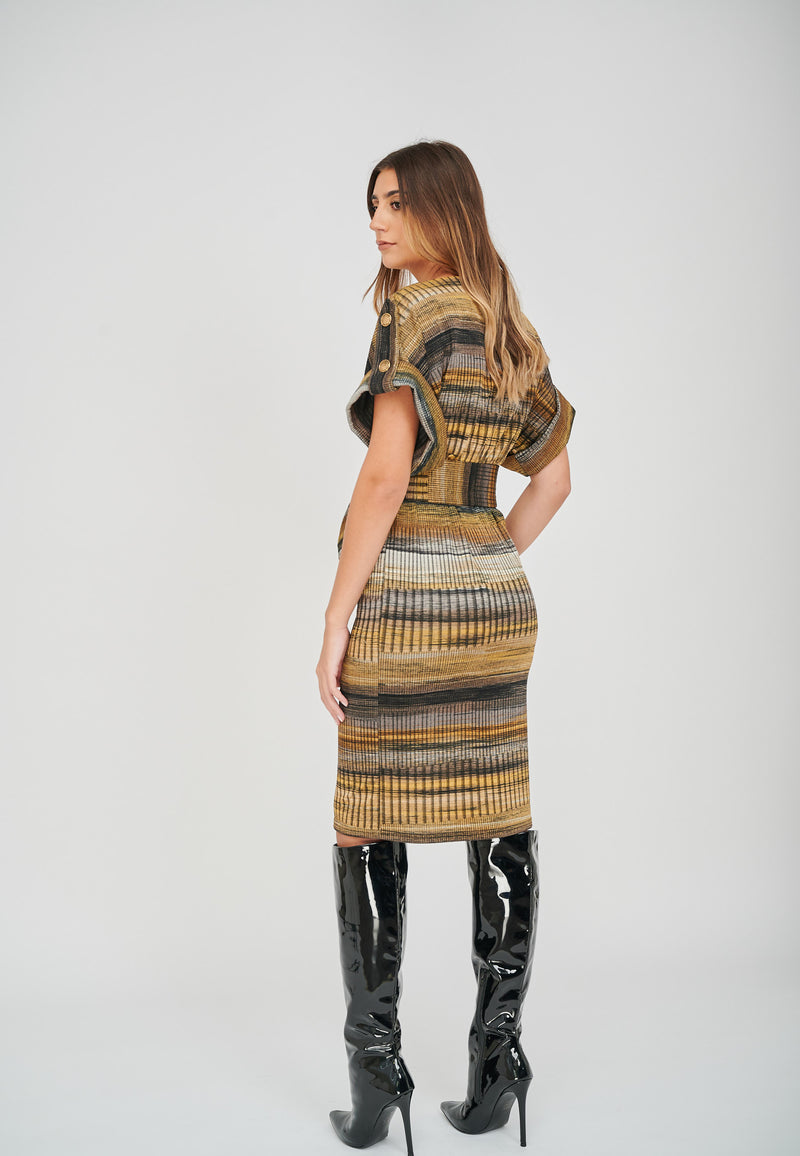 The Zoe Stripe Print Jacquard Dress Back View
