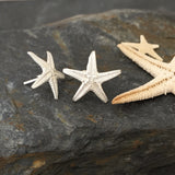 Little starfish ear studs