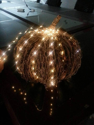 100 Led Fairy String Lights Silver Wire Lights 10 Meter