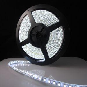 LED Strip/Tape Light  3528 SMD IP33 or IP65 Rated, 300 LED's, 5 Meters - expert island