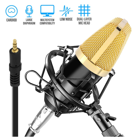 PYLE PDMIC71 Cardioid Condenser Microphone with Shock Mount, XLR to 3.5mm Audio Cable