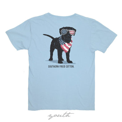 Youth American Puppy Tee