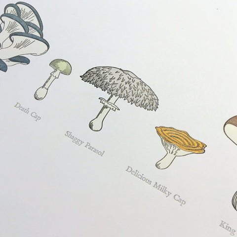 "A Few Mushrooms Letterpress Print - 12"" x 18"""