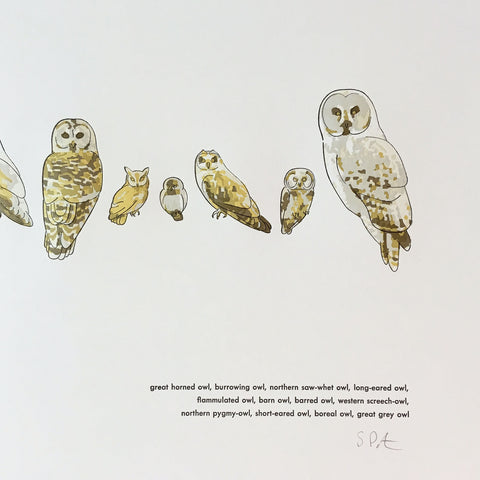 "A Few Owls Letterpress Print - 12"" x 18"""