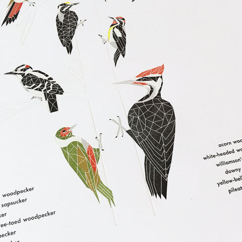 "A Few Woodpeckers Letterpress Print - 12"" x 18"""