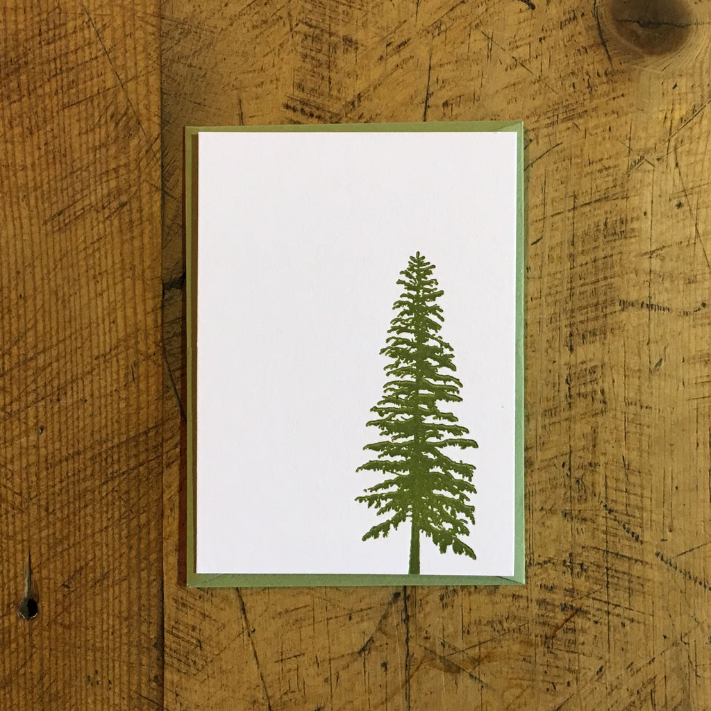 Conifer Letterpress Gift Enclosure Card