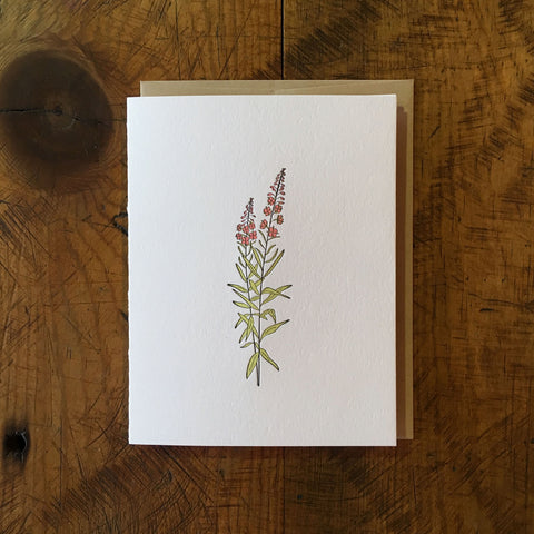 Fireweed Wildflower Letterpress Card