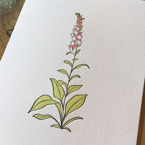 Foxglove Wildflower Letterpress Card