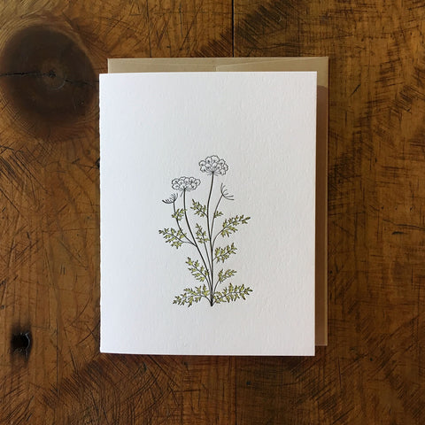 Queen Anne's Lace Wildflower Letterpress Card