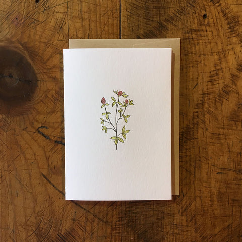 Red Clover Wildflower Letterpress Card