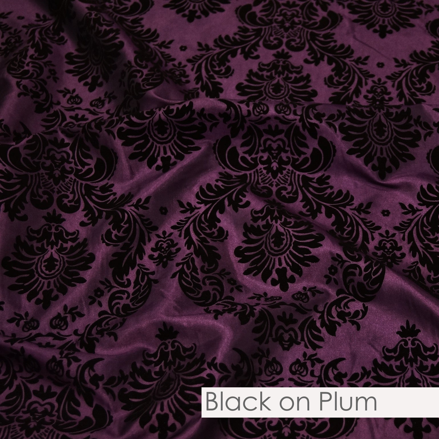 BLACK ON PLUM