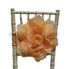 Organza Rosette Bow & Band - Peach