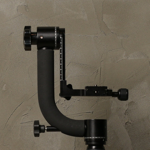 Promaster Professional Gimbal Head GH-10
