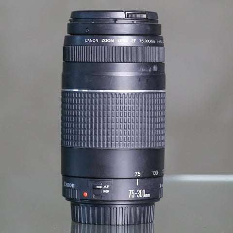 Canon EF 75-300mm f4-5.6 III (Used)