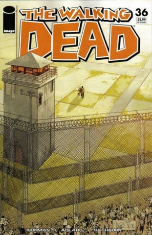 The Walking Dead #36 Image Comics