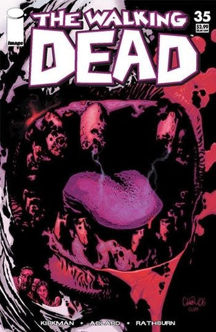 The Walking Dead #35 Image Comics