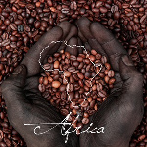 Ethiopia Yirgacheffe Natural - Serve Coffee