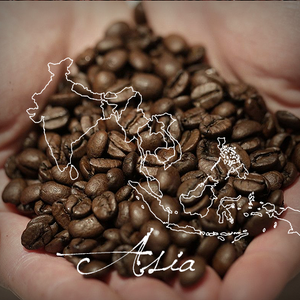 AAA Regional Coffee Sampler - Serve Coffee
