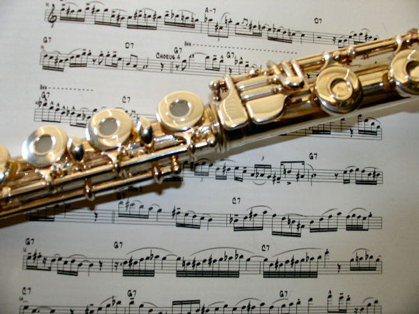 The Great Flute Debate: Open or Closed Hole View
