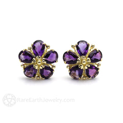 February Bithstone Earrings Clip Ons Natural Amethyst Rare Earth Jewelry