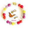 Custom-Made Butterfly Bracelets & Gift Sample Kit