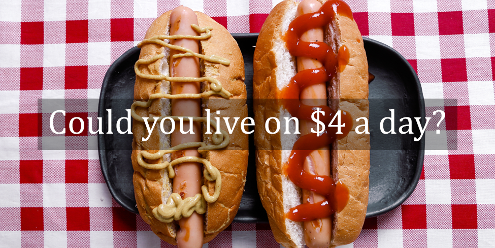 Could You Live on $4 a Day?