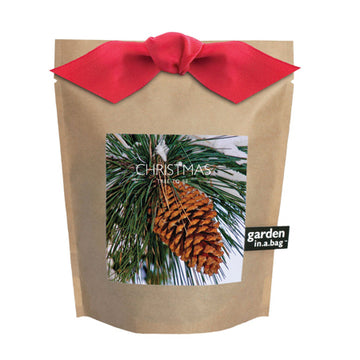 Potting Shed Creations ☆ Christmas Tree Garden in a Bag