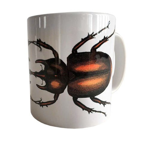 Albertus Seba Beetle Print Mug, Natural History Coffee Cup. Well Done Goods