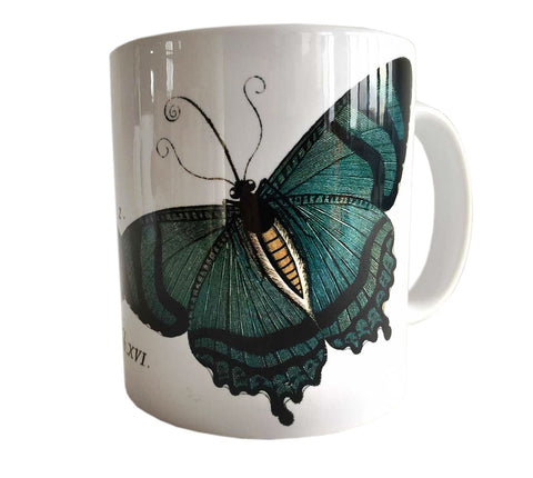 Albertus Seba Butterfly Print Mug, Natural History Coffee Cup. Well Done Goods