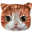Small Cat Face Purse. Orange Tabby with Big Yellow Eyes Bag, by Well Done Goods