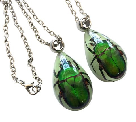 Lucite Beetle Taxidermy Necklace