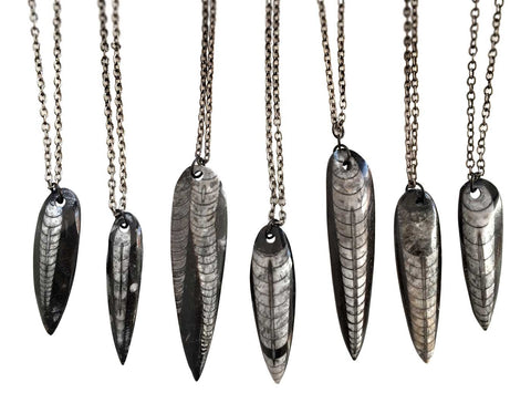 Orthoceras Fossil Pendants, Black Marble, by Well Done Goods