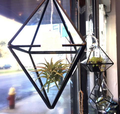Hanging Pyramid Geometric Glass Terrarium Well Done Goods