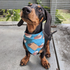 The Sausage Sizzle Dog Bandana