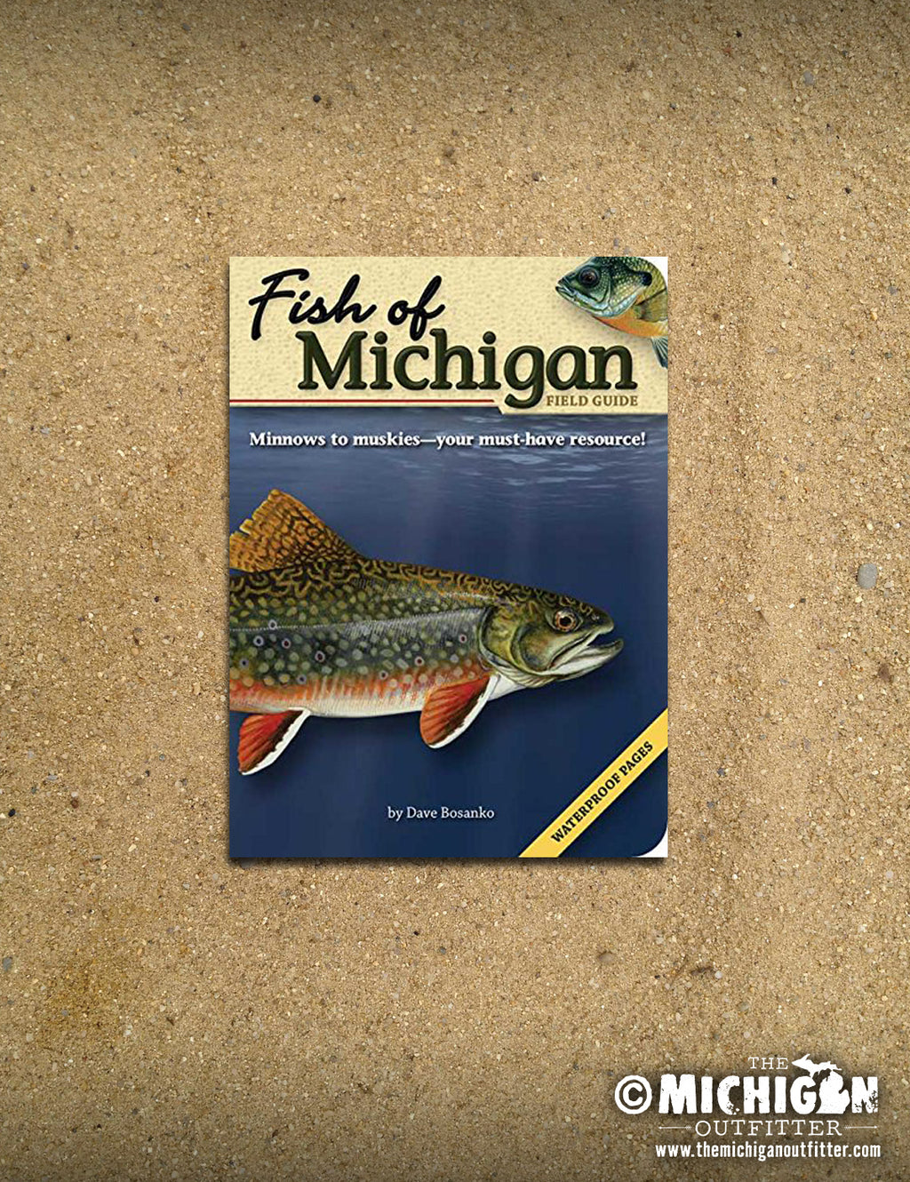 Fish of Michigan Feild Guide