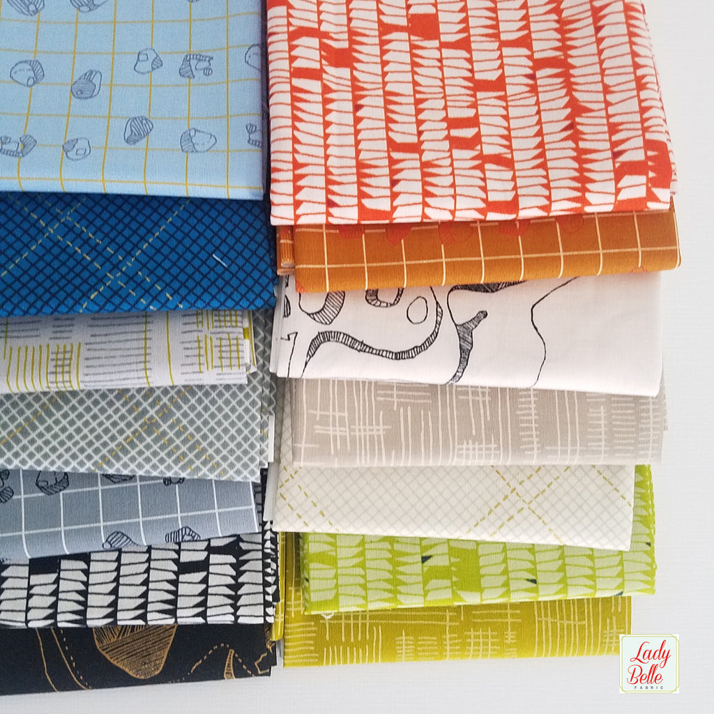 Carkai by Carolyn Friedlander for Robert Kaufman 14 piece Fat Quarter Bundle