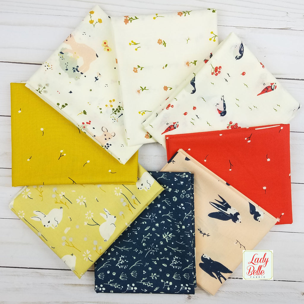 Little by Jenny Lumelsky for Birch Fabrics Half Yard Bundle