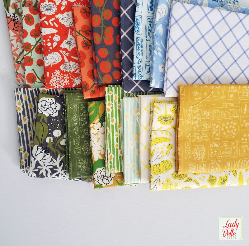 Mazy by Dylan M For Windham Fabrics Fat Quarter Bundle
