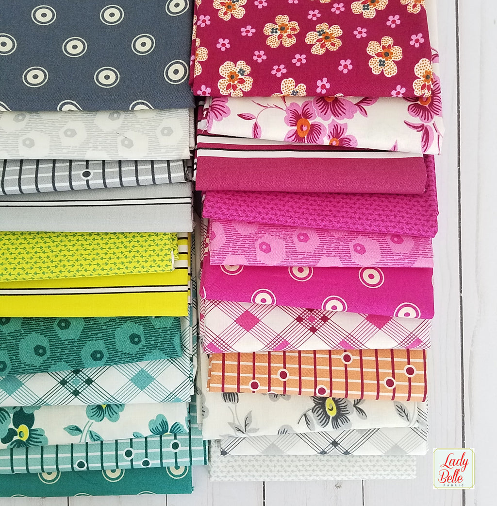 Washington Depot by Denyse Schmidt for Free Spirit 22 piece Fat Quarter Bundle