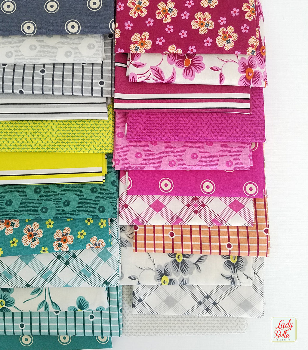 Washington Depot by Denyse Schmidt for Free Spirit Fat Quarter Bundle